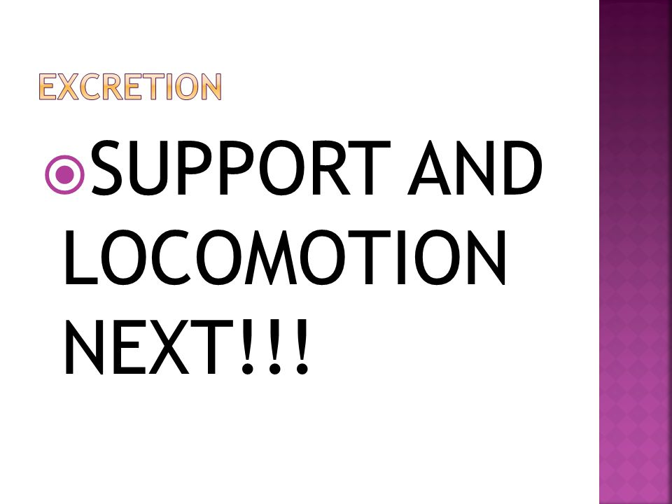 SUPPORT AND LOCOMOTION NEXT!!!