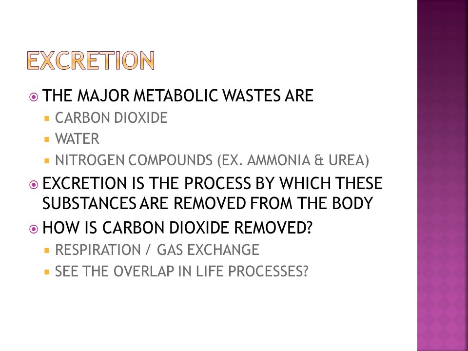 EXCRETION THE MAJOR METABOLIC WASTES ARE