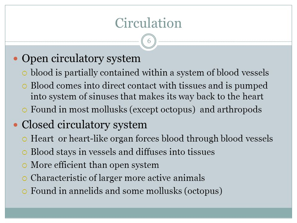 Circulation Open circulatory system Closed circulatory system
