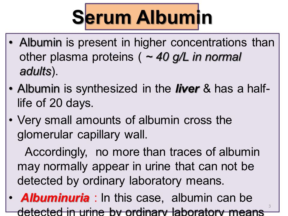 Serum Albumin Albumin is present in higher concentrations than other plasma proteins ( ~ 40 g/L in normal adults).