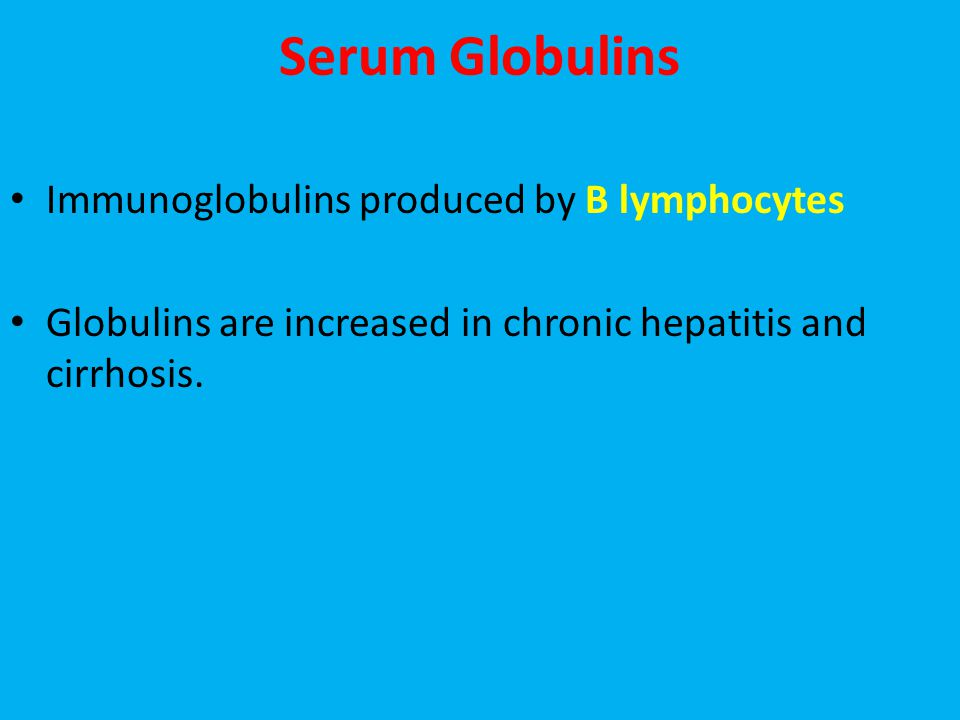 Serum Globulins Immunoglobulins produced by B lymphocytes
