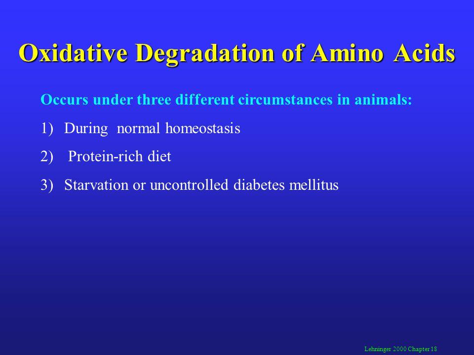 Oxidative Degradation of Amino Acids