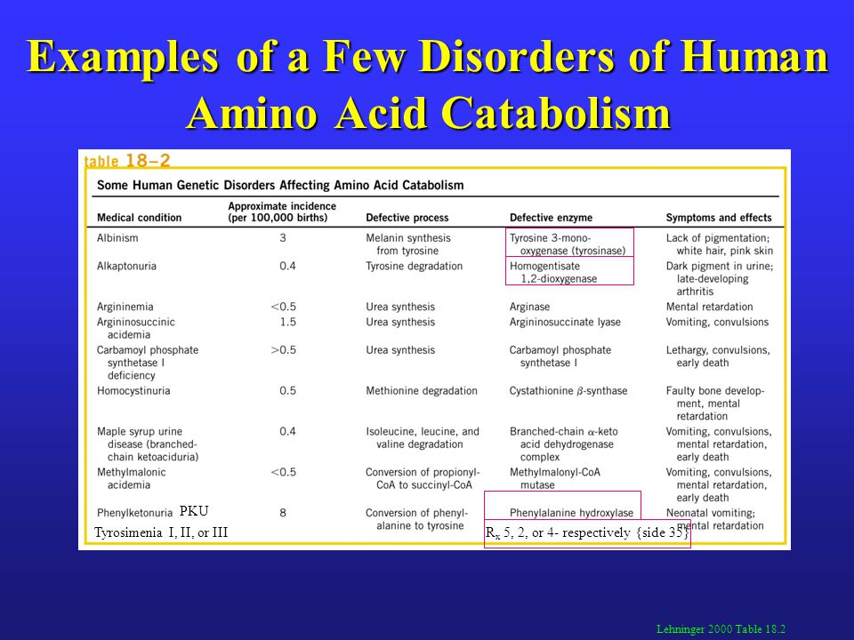 Examples of a Few Disorders of Human Amino Acid Catabolism