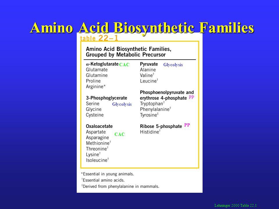Amino Acid Biosynthetic Families