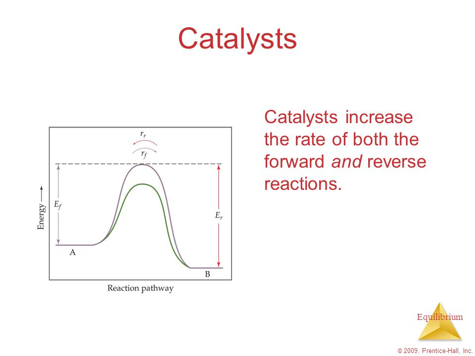 Catalysts Catalysts increase the rate of both the forward and reverse reactions.