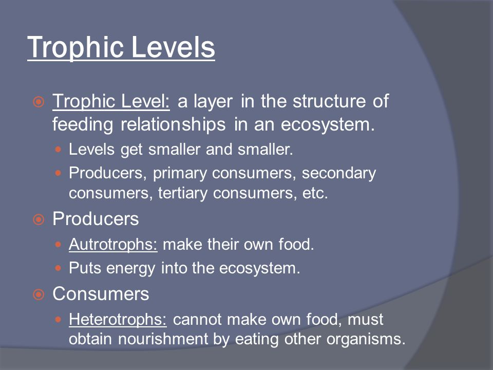 Trophic Levels Trophic Level: a layer in the structure of feeding relationships in an ecosystem. Levels get smaller and smaller.