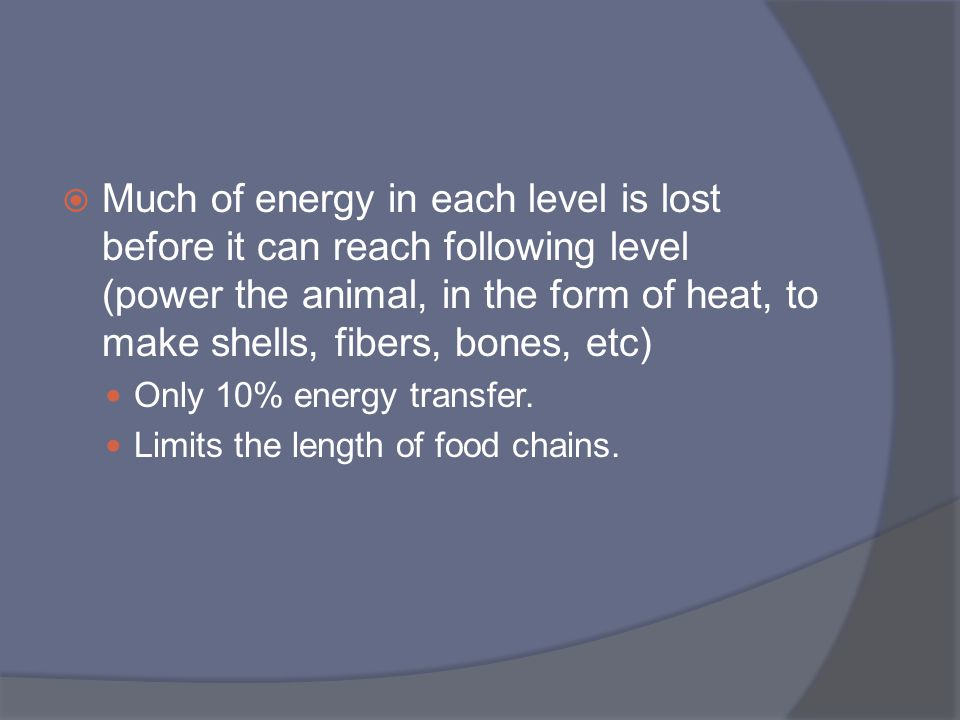 Much of energy in each level is lost before it can reach following level (power the animal, in the form of heat, to make shells, fibers, bones, etc)