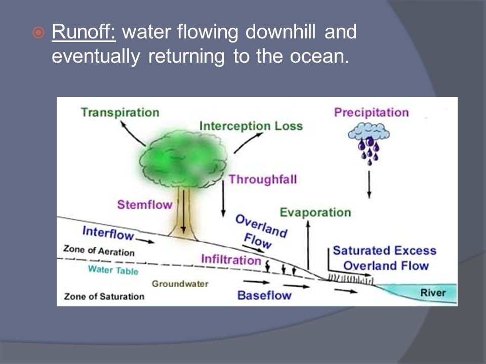 Runoff: water flowing downhill and eventually returning to the ocean.