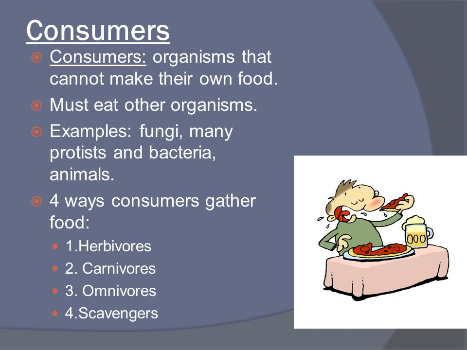 Consumers Consumers: organisms that cannot make their own food.