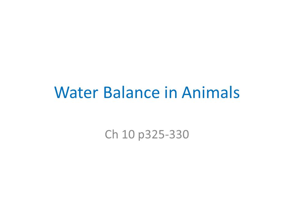 Water Balance in Animals