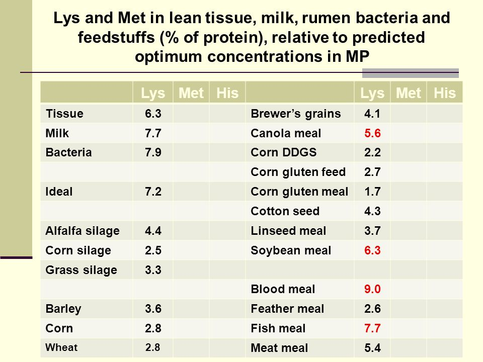 Lys and Met in lean tissue, milk, rumen bacteria and feedstuffs (% of protein), relative to predicted optimum concentrations in MP