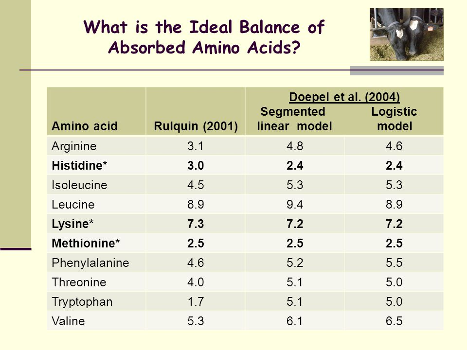 What is the Ideal Balance of Absorbed Amino Acids