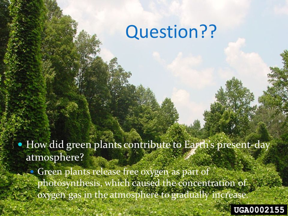 Question How did green plants contribute to Earth's present-day atmosphere