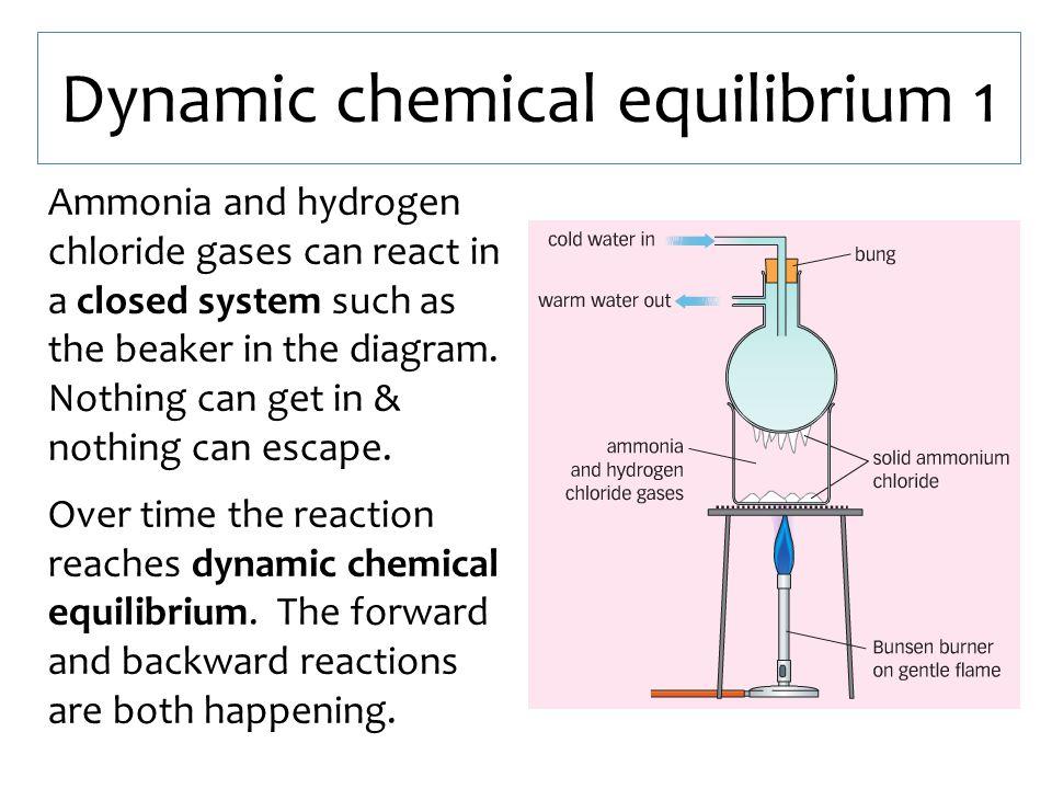 Dynamic chemical equilibrium 1