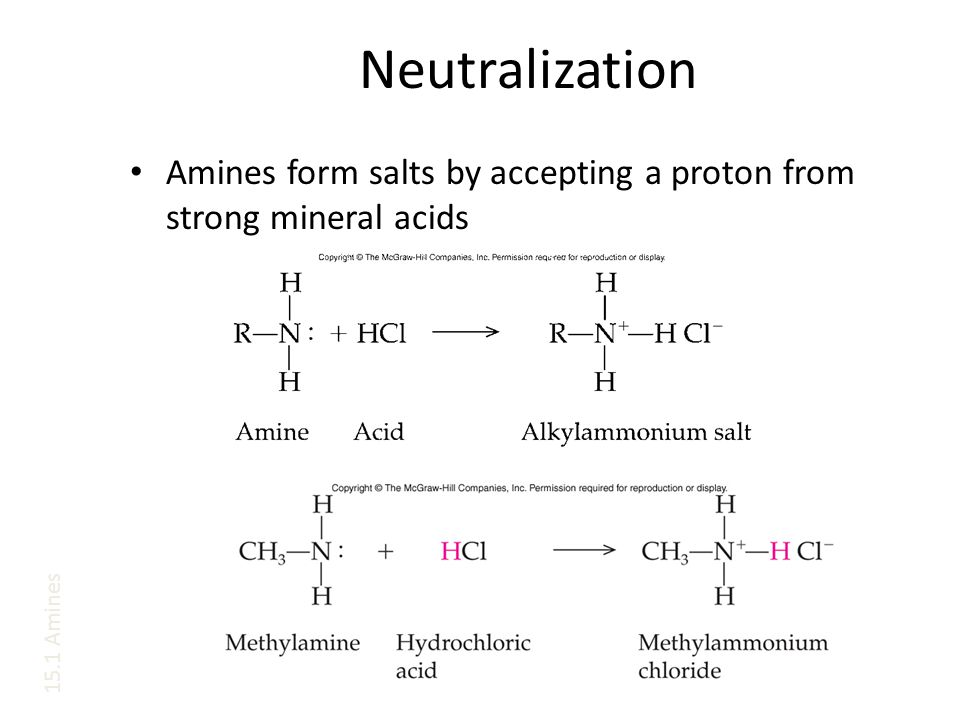 Neutralization Amines form salts by accepting a proton from strong mineral acids 15.1 Amines
