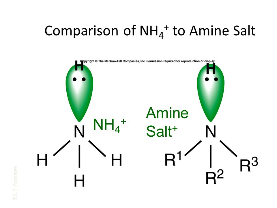 Comparison of NH4+ to Amine Salt