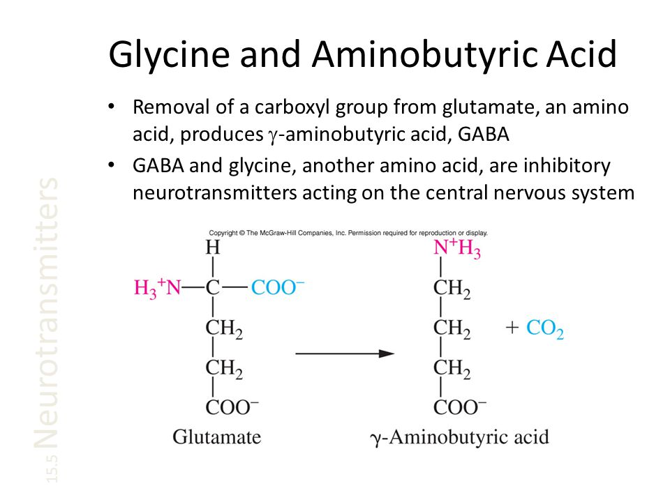 Glycine and Aminobutyric Acid