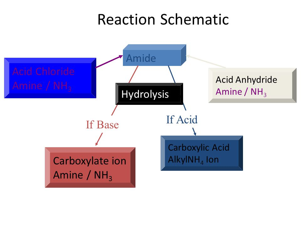 Reaction Schematic Amide Acid Chloride Amine / NH3 Hydrolysis If Acid