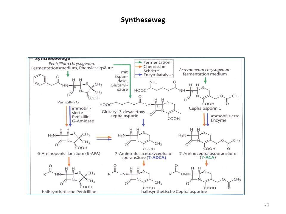 Syntheseweg