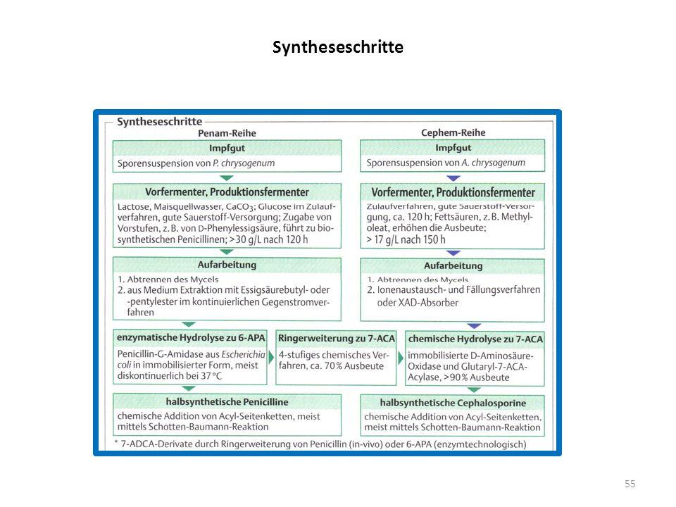 Syntheseschritte