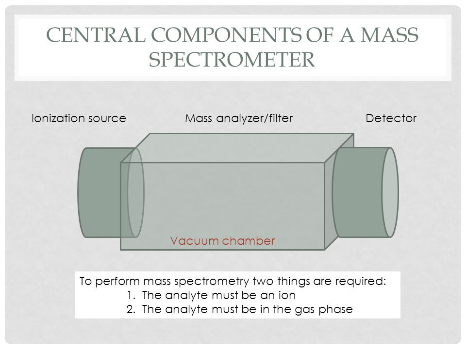 Central components of a mass spectrometer