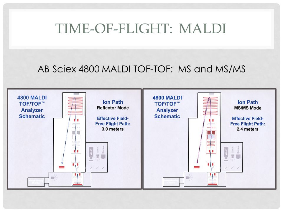 Time-of-flight: maldi