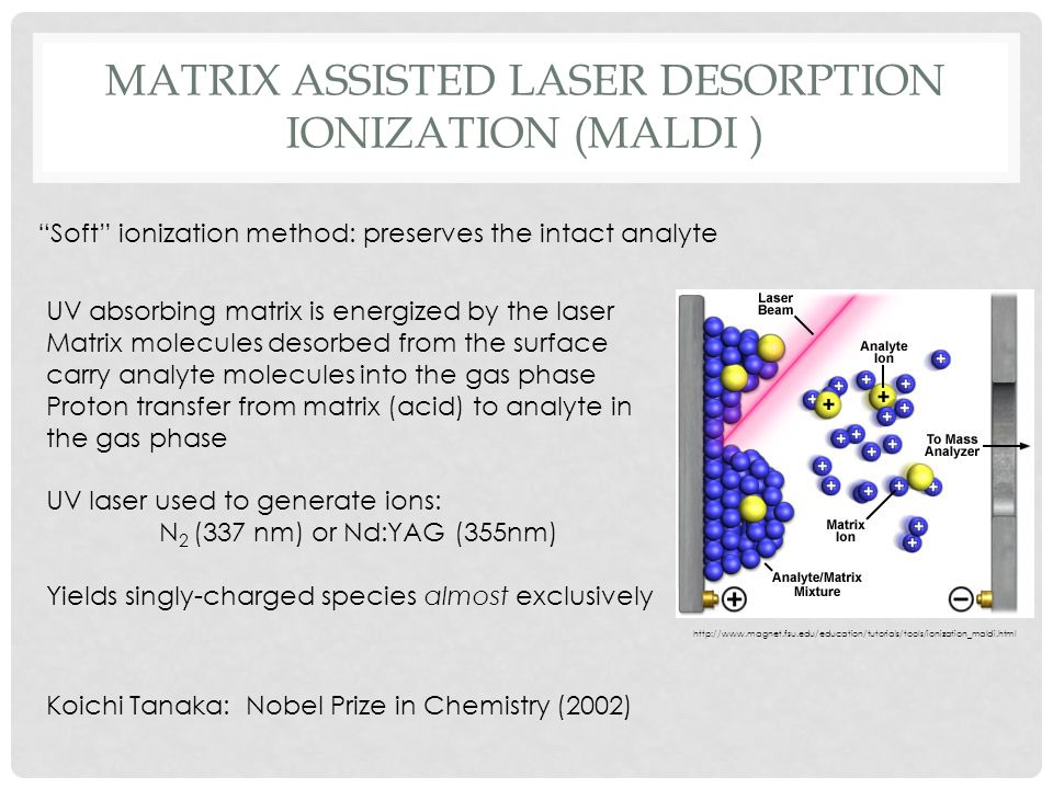 matrix assisted laser desorption ionization (MALDI )
