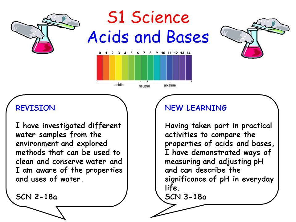 S1 Science Acids and Bases