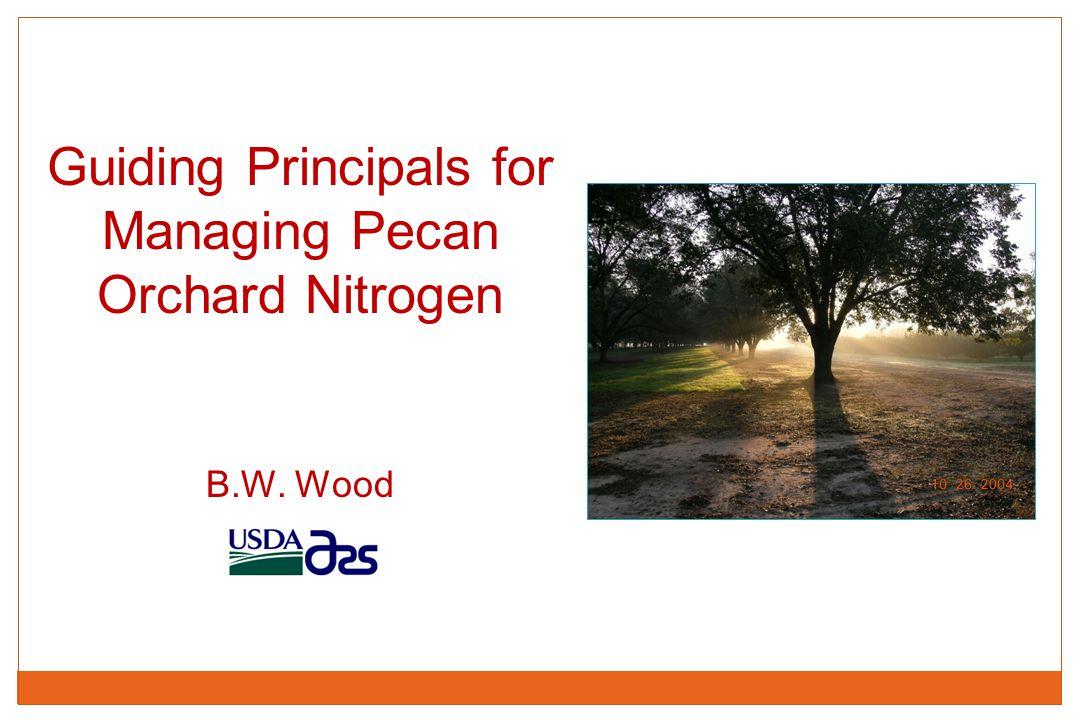 Guiding Principals for Managing Pecan Orchard Nitrogen