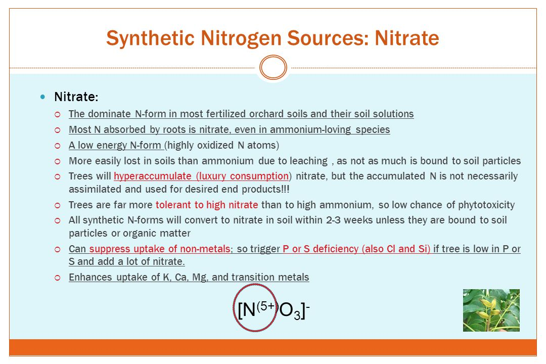 Synthetic Nitrogen Sources: Nitrate