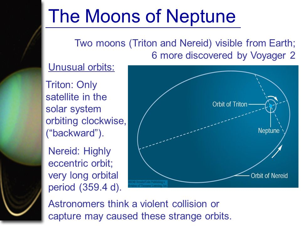 The Moons of Neptune Two moons (Triton and Nereid) visible from Earth; 6 more discovered by Voyager 2.