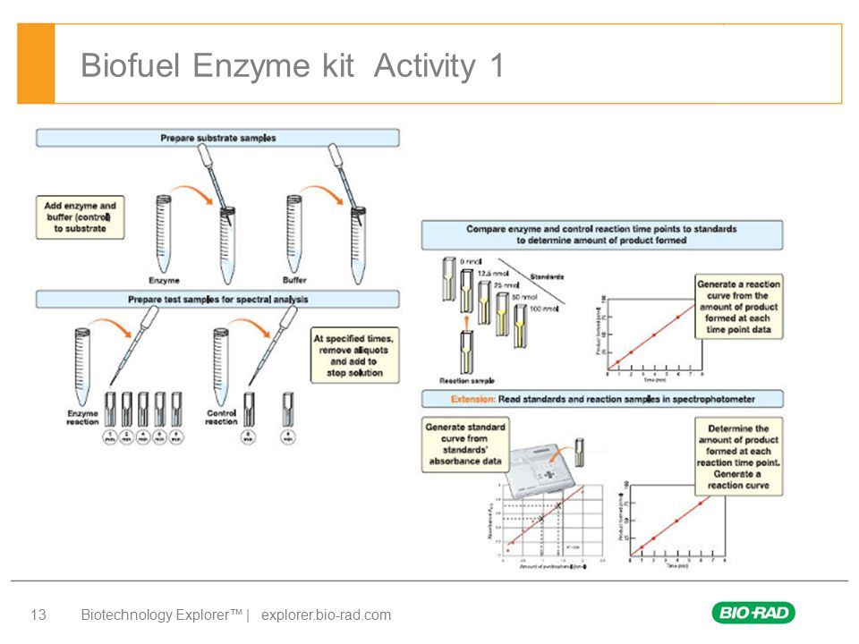 Biofuel Enzyme kit Activity 1