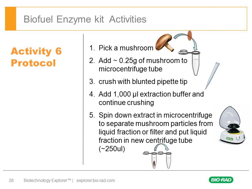 Biofuel Enzyme kit Activities