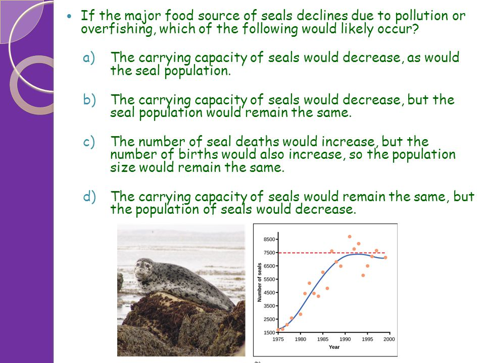 If the major food source of seals declines due to pollution or overfishing, which of the following would likely occur