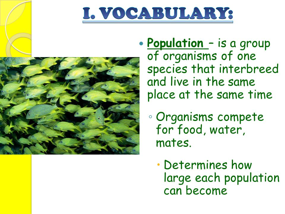 I. VOCABULARY: Population – is a group of organisms of one species that interbreed and live in the same place at the same time.