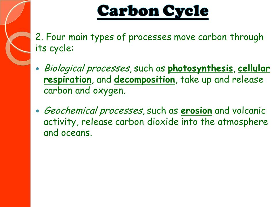 Carbon Cycle 2. Four main types of processes move carbon through its cycle:
