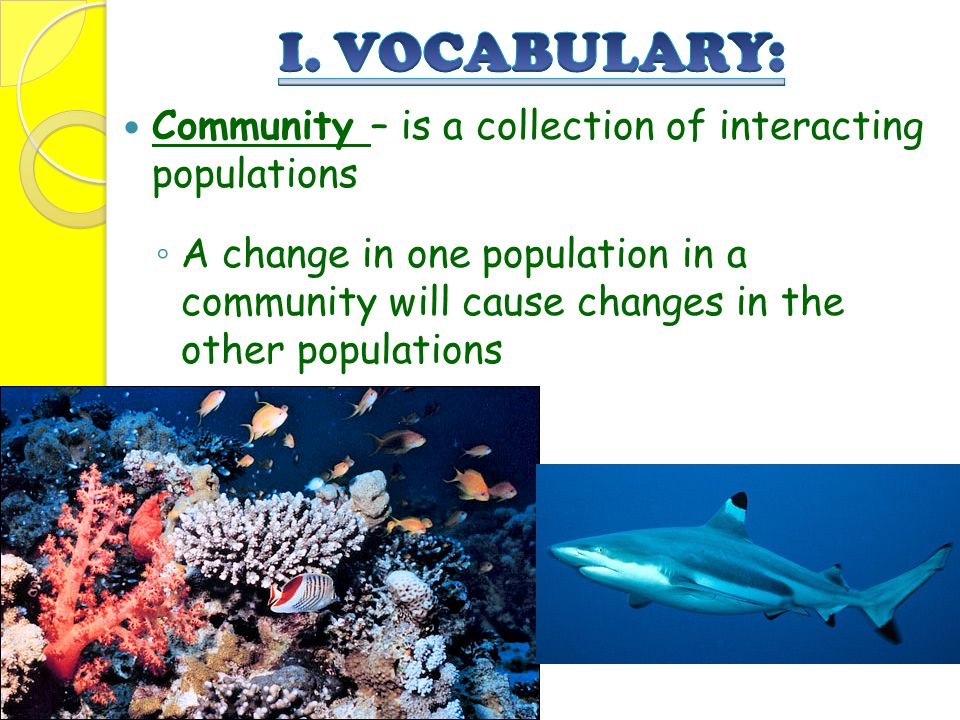 I. VOCABULARY: Community – is a collection of interacting populations