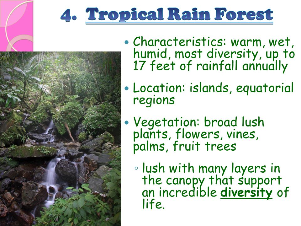 4. Tropical Rain Forest Characteristics: warm, wet, humid, most diversity, up to 17 feet of rainfall annually.