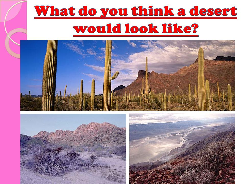 What do you think a desert would look like