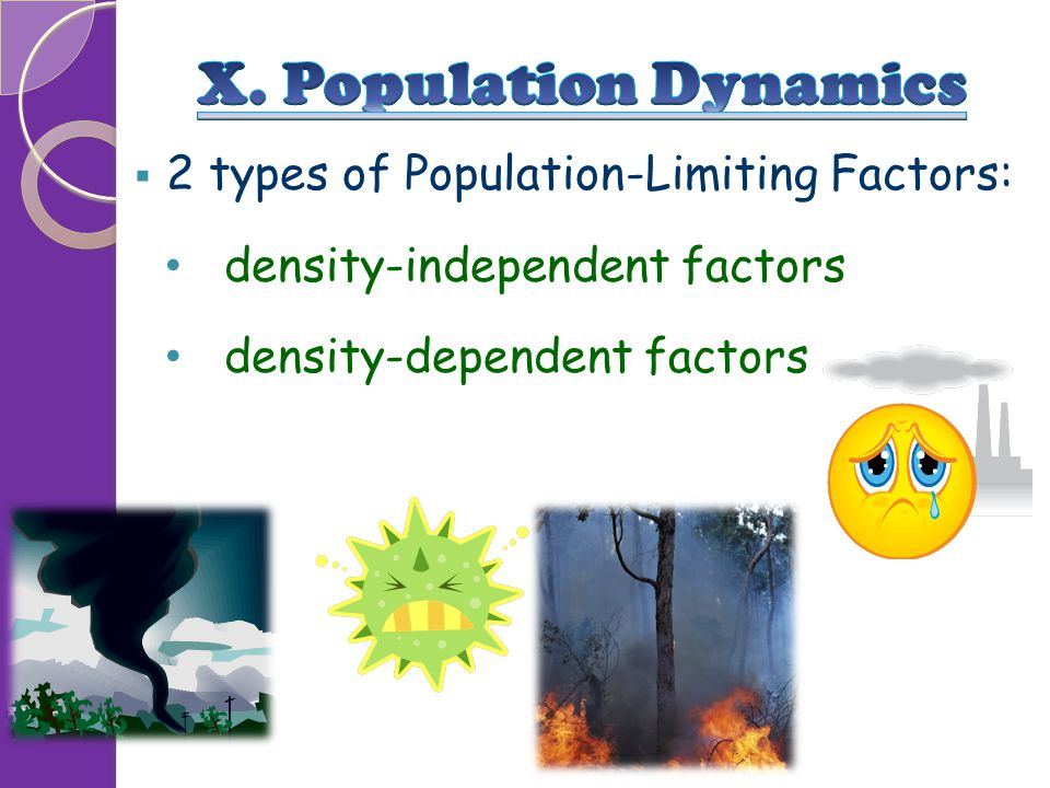 X. Population Dynamics 2 types of Population-Limiting Factors: