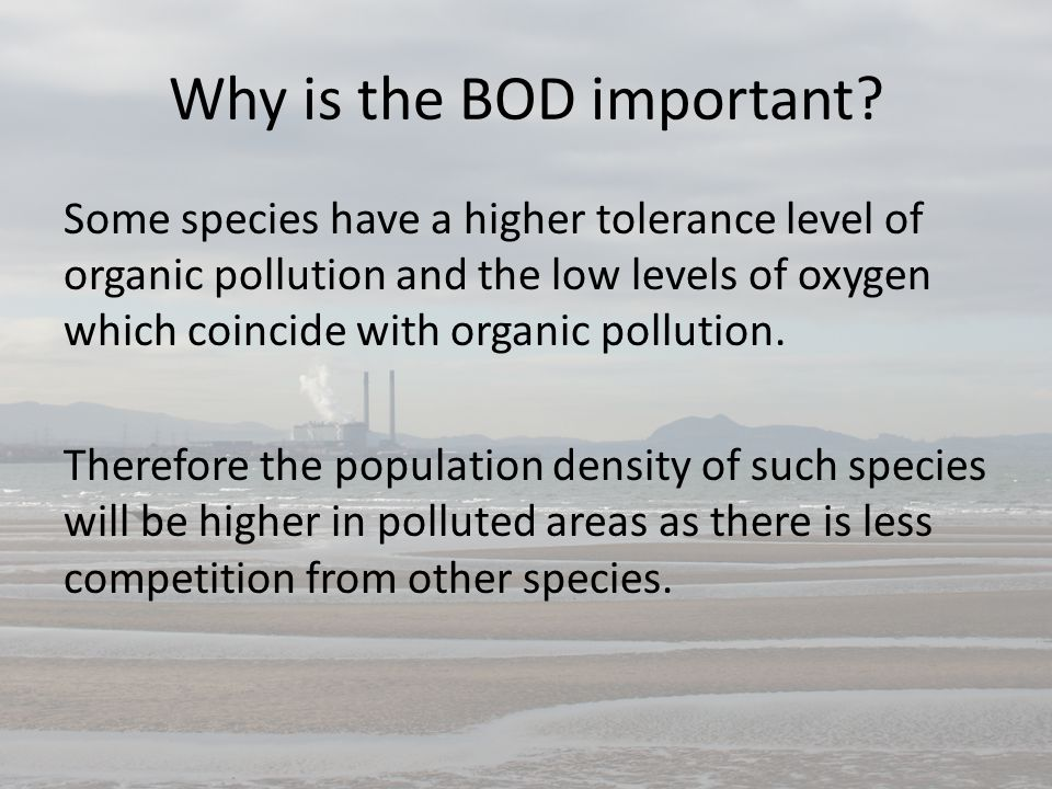 Why is the BOD important