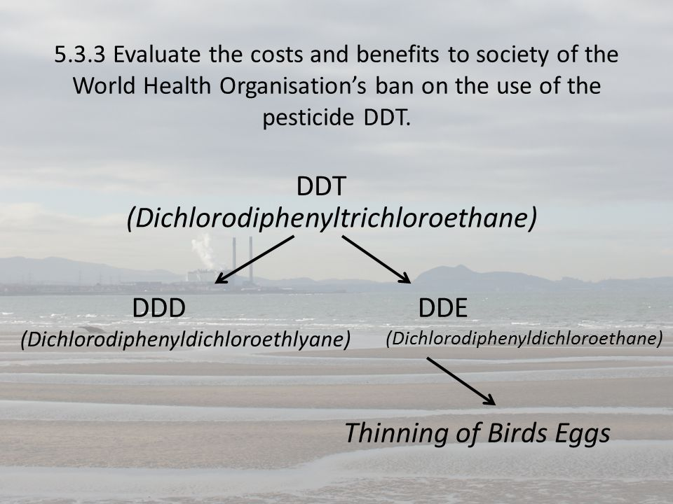5.3.3 Evaluate the costs and benefits to society of the World Health Organisation's ban on the use of the pesticide DDT.