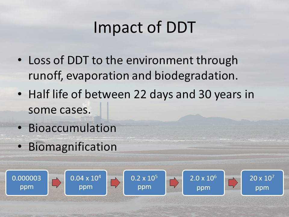 Impact of DDT Loss of DDT to the environment through runoff, evaporation and biodegradation.