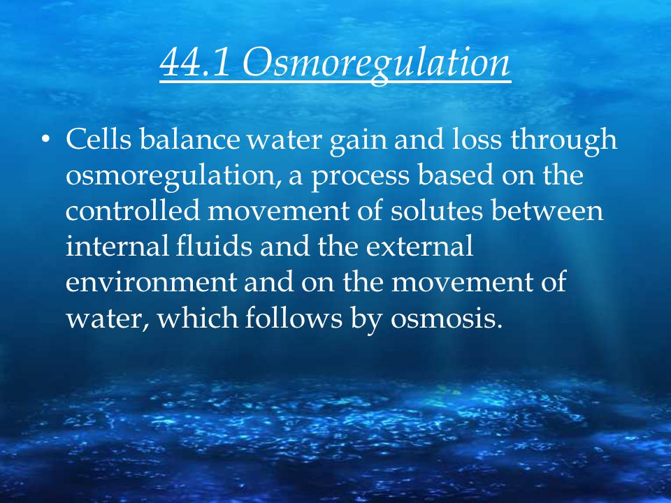 44.1 Osmoregulation