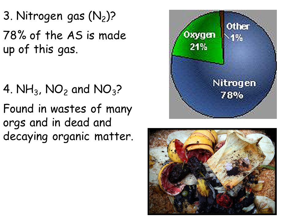 3. Nitrogen gas (N2) 78% of the AS is made up of this gas. 4. NH3, NO2 and NO3
