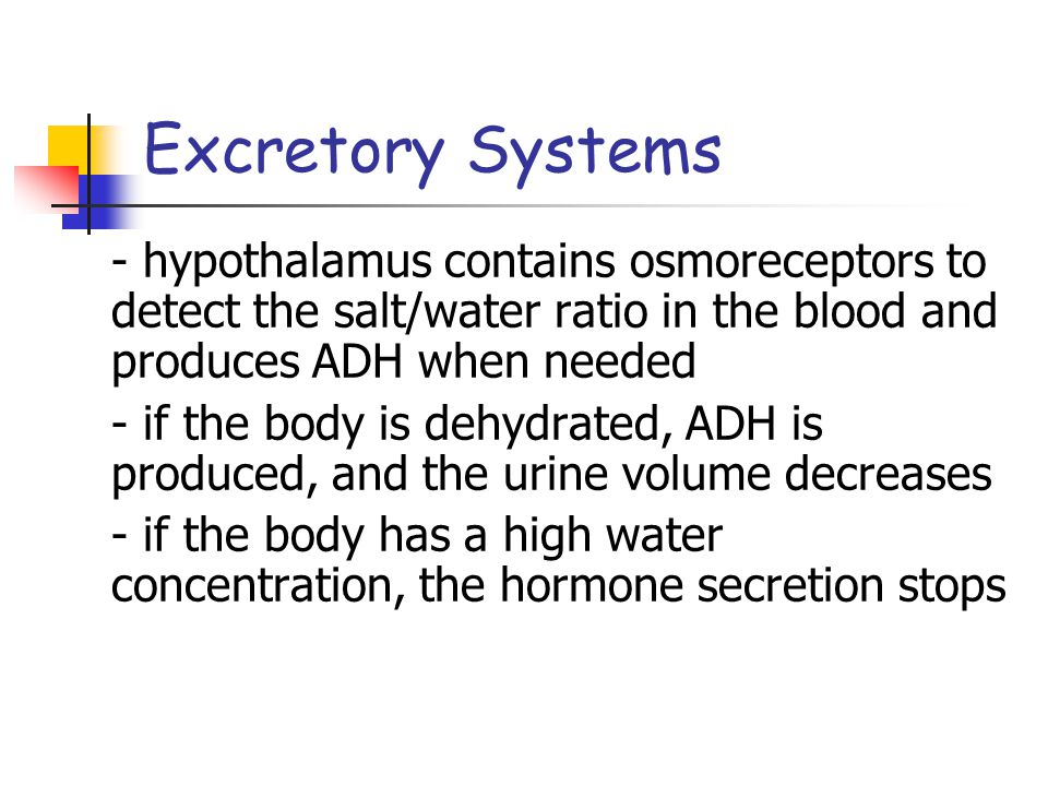 Excretory Systems - hypothalamus contains osmoreceptors to detect the salt/water ratio in the blood and produces ADH when needed.