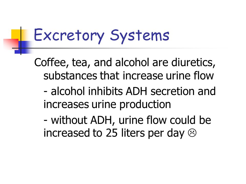 Excretory Systems Coffee, tea, and alcohol are diuretics, substances that increase urine flow.