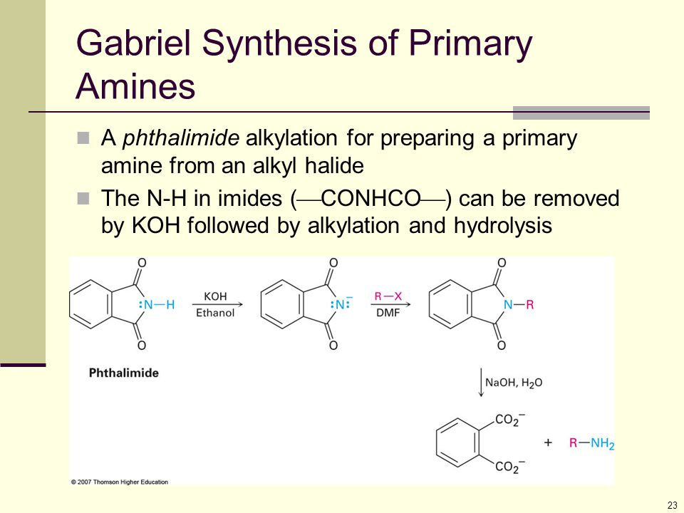 Gabriel Synthesis of Primary Amines