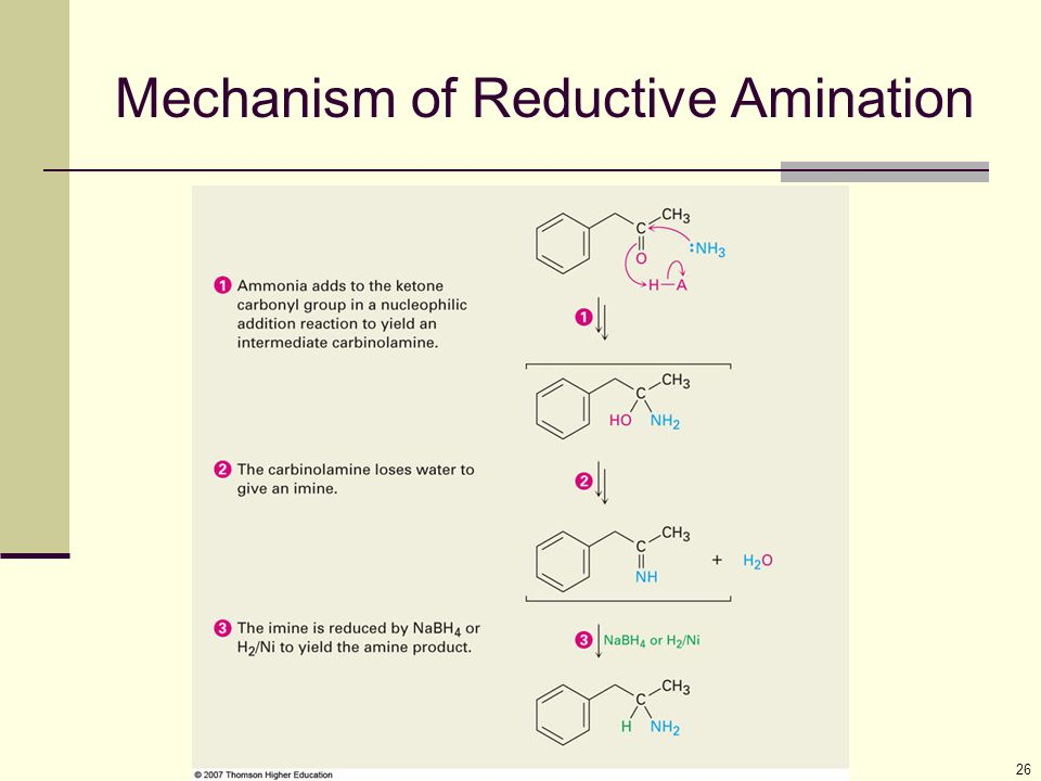 Mechanism of Reductive Amination