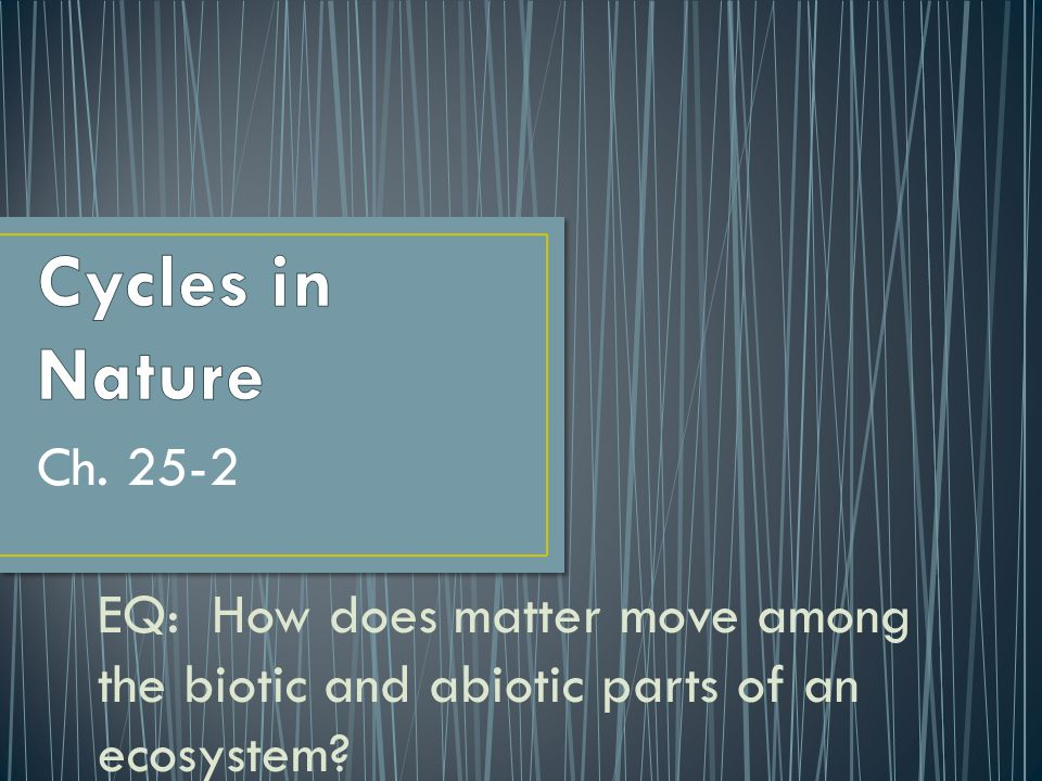 Cycles in Nature Ch. 25-2.
